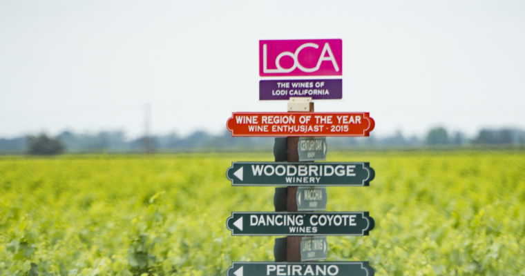 Take a Tour of Albariño in Lodi Wine Country